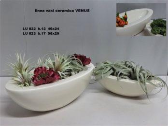 F01P-Linea vasi VENUS