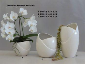 I01V-linea vasi PEGASO