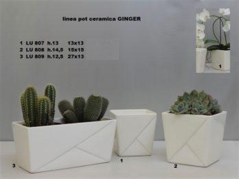 G01R-Linea pot GINGER