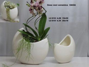 I01P linea vasi GAGA