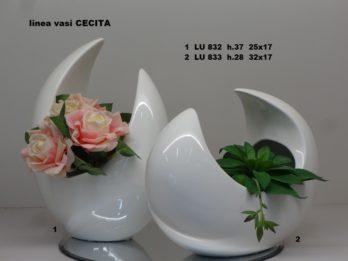 A00-Linea vasi CECITA