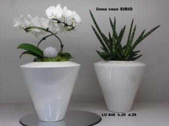 A00-Linea vasi SIRIO