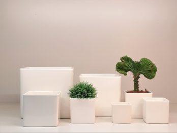 1 Ceramica bianca