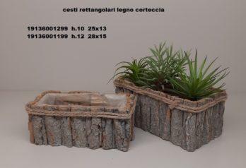 H01S-linea basket CORTECCIA