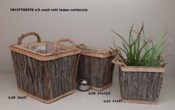 H01T-linea basket CORTECCIA