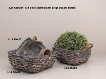 G01W-linea basket BOBS