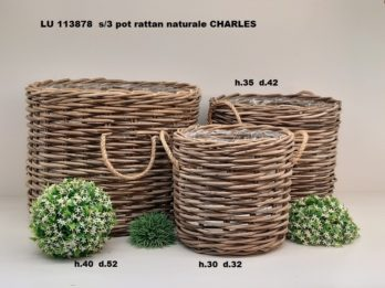 G01P-linea basket CHARLES
