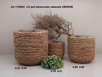 G01M-linea basket CROSUE'