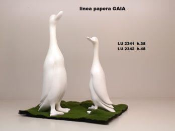 G01C-soggetto GAIA