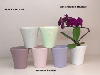 F01B-linea pot HAWAII
