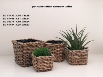 G01C-linea basket LANA
