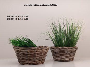 G01H-linea basket LANA