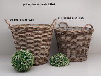 G01F-linea basket LANA