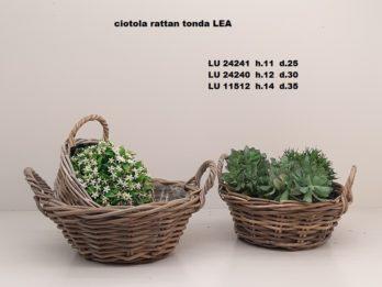 G01I-linea basket LEA